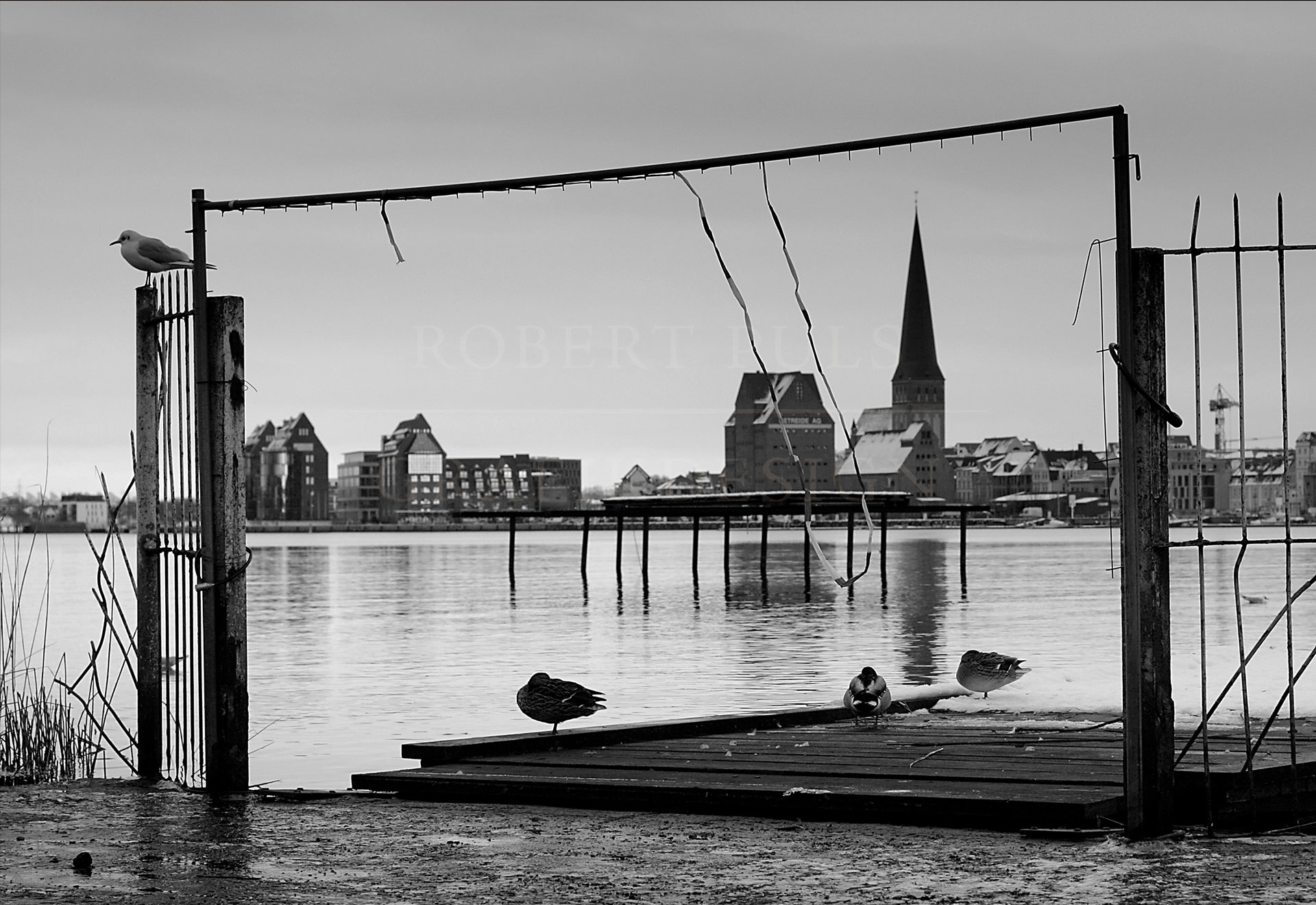Foto Postkarte Rostock