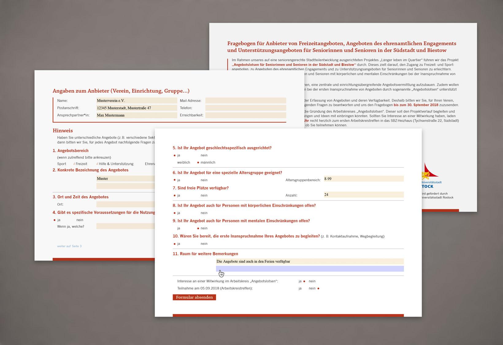 Interaktives Formular Gestaltung Und Einrichtung Puls